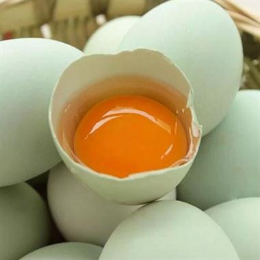 【泉生】散养青壳鸡蛋 10枚 纯天然绿色食品