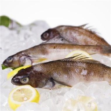 【皇港世家】南极冰鱼500g 鱼肉海鲜